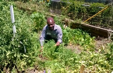 Helping local African villagers build a more sustainable community and grow healthy crops!