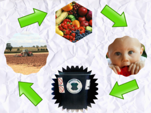 Closed loop system of composting