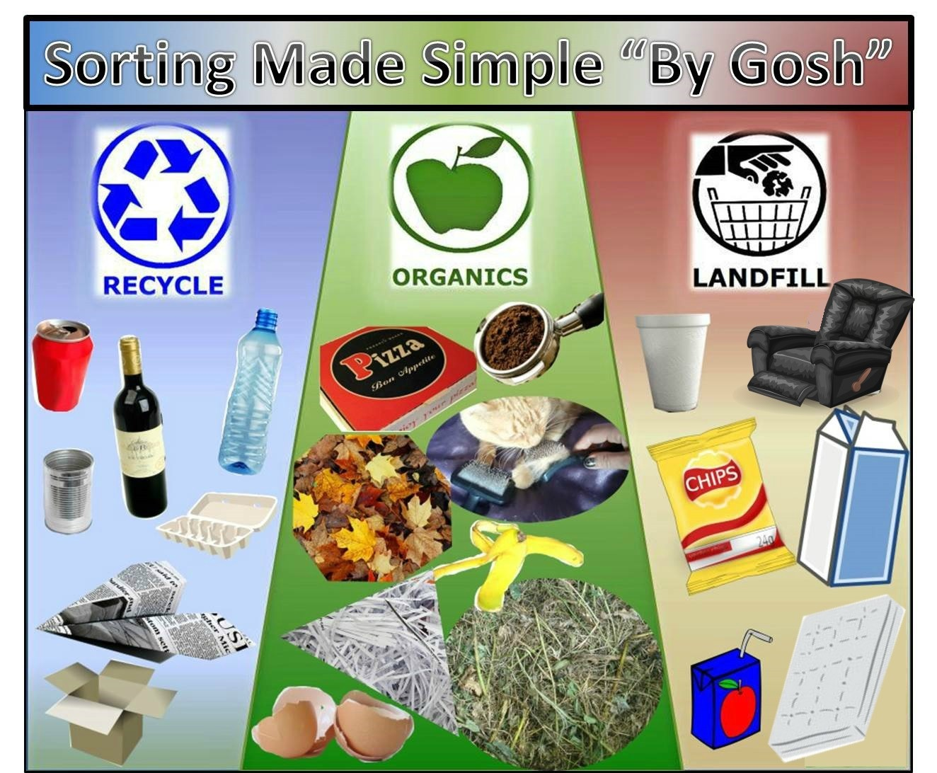 Waste Sorting Infographic