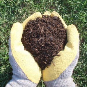 Organics By Gosh Triple Power Compost