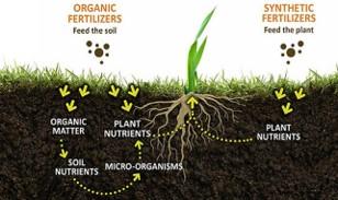 Soil Health Cycle